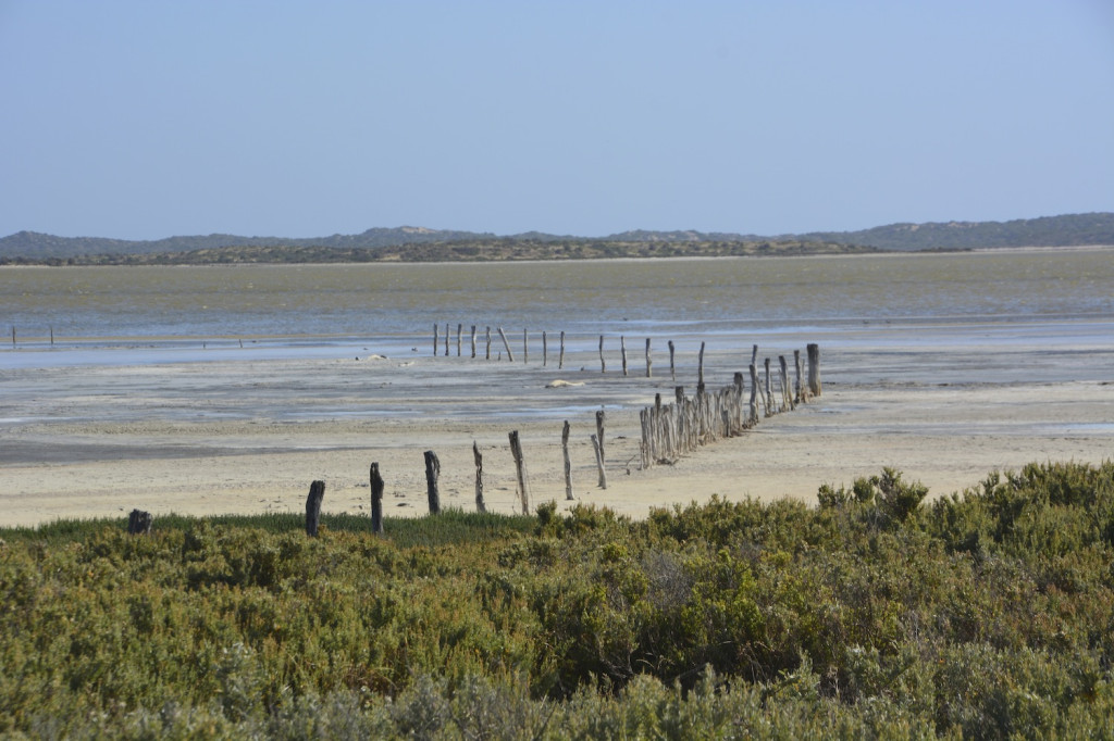 Coorong National Park wetland and salt pans